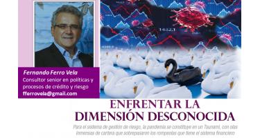 Fernando Ferro Vela Consultor senior en políticas y procesos de crédito y riesgo fferrovela@gmail.com 8 de julio de 2020